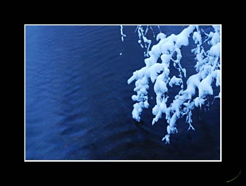 island_park_winter1.jpg