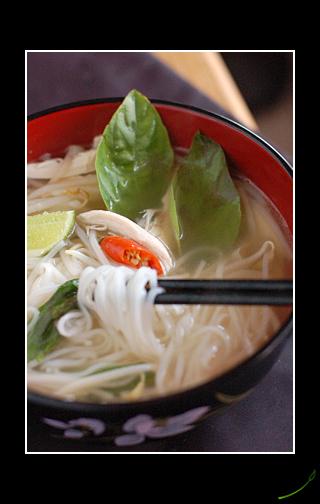 Phở Gà – Vietnamese Chicken Noodle Soup | Hot Sour Salty